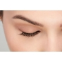 ARDELL Professional Wispies 113 Lashes - 5 pairs